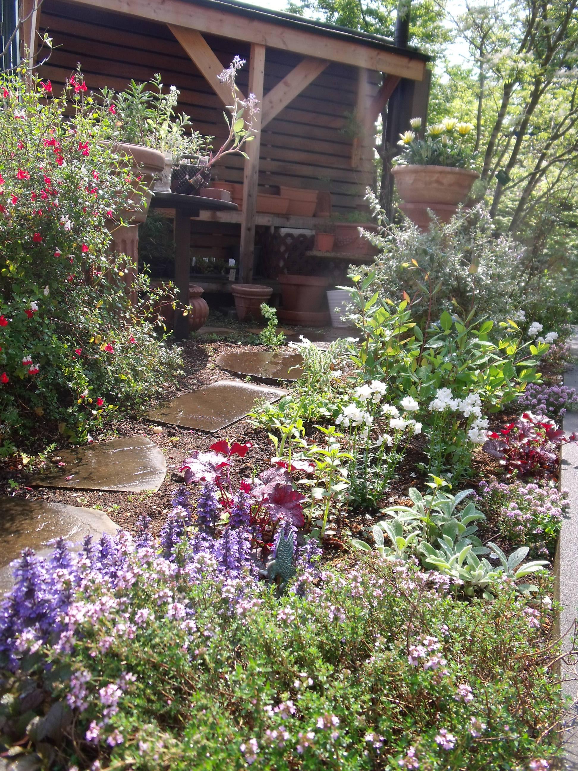 KoHo Natural Garden Design